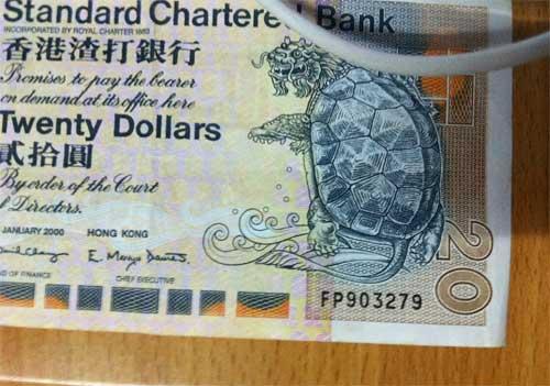 looking for grandmother money frog on a wire rh foaw wordpress com Wells Fargo Wiring Money How Do I Wire Money